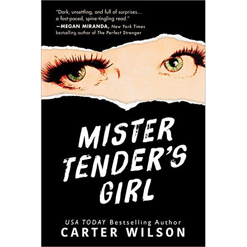 Mini-Spoiler-Free Review: Mister Tender's Girl